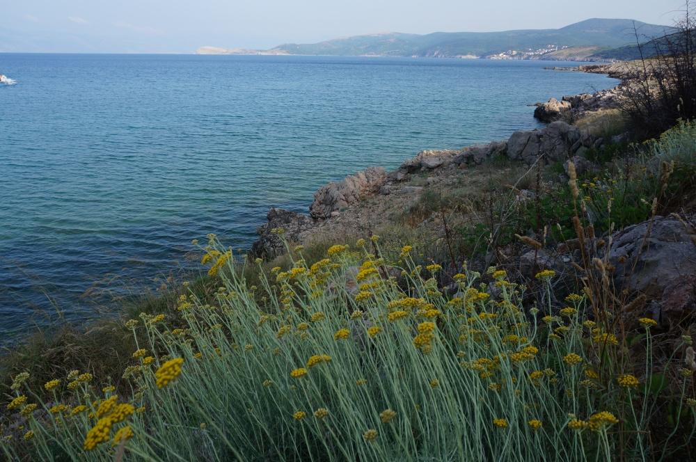 Ela Jezierna opowiada o życiu w Chorwacji [wywiad] -