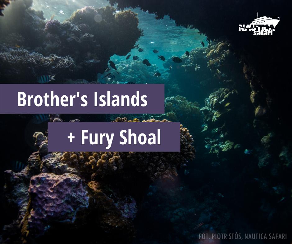 Brothersy + Fury Shoal NOWA TRASA -
