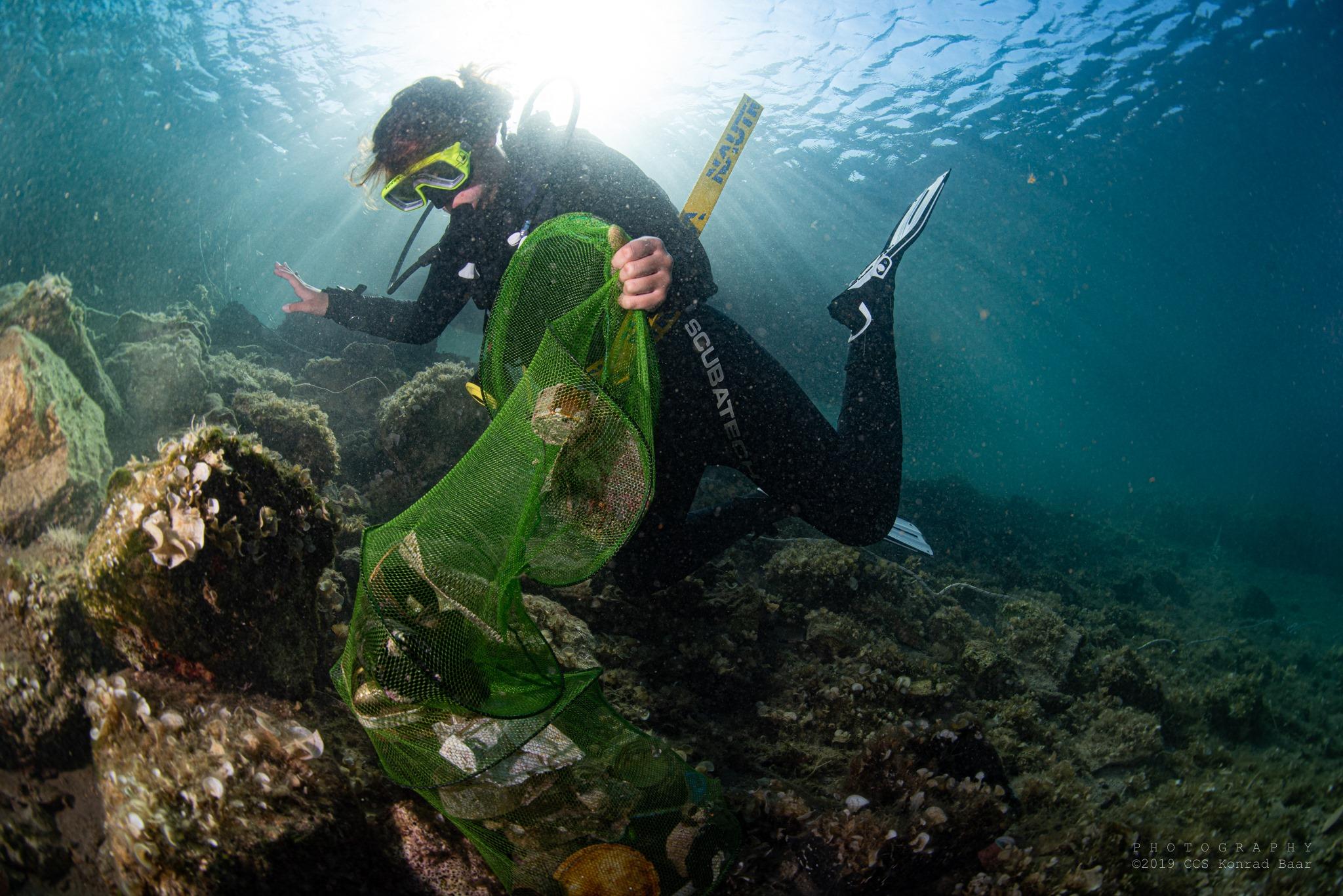 Ekologia mórz i oceanów - webinar -