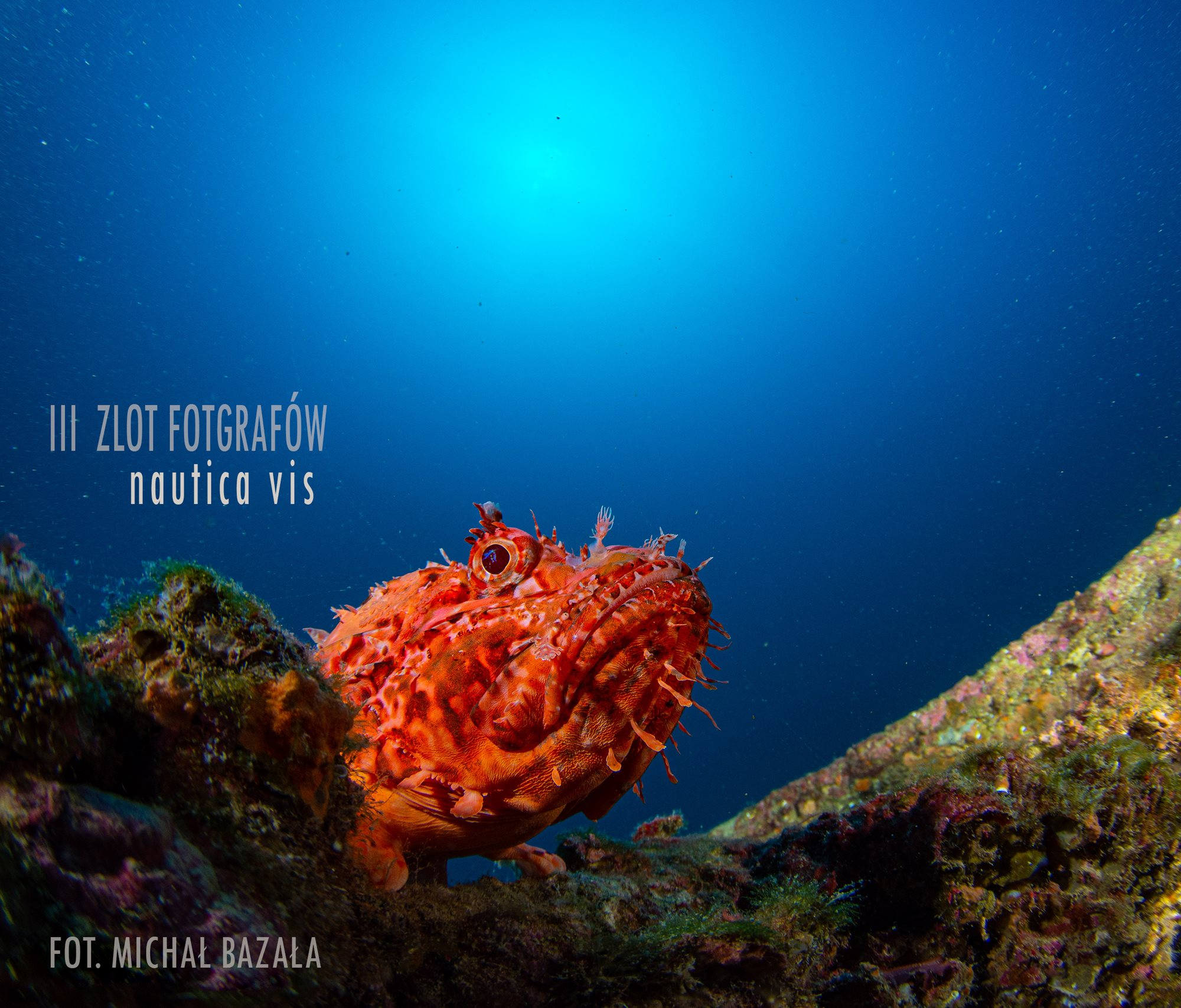Zlot Fotografów Podwodnych Vis 2021 PODSUMOWANIE -